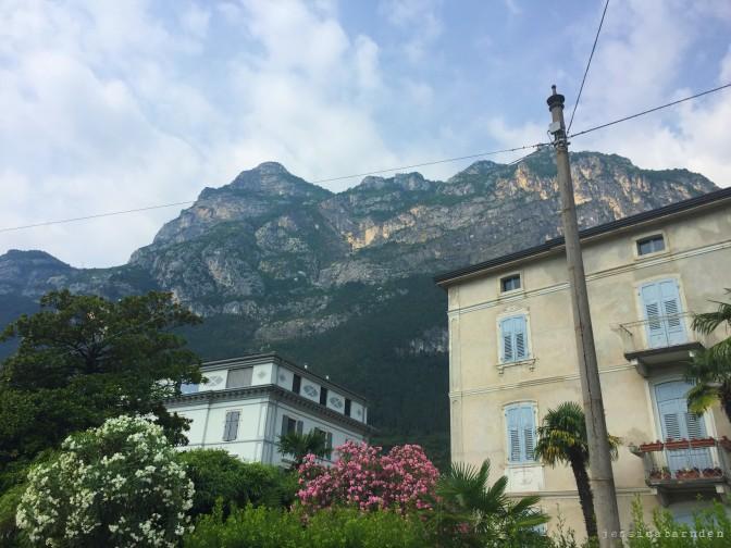 blog post 2 (24)