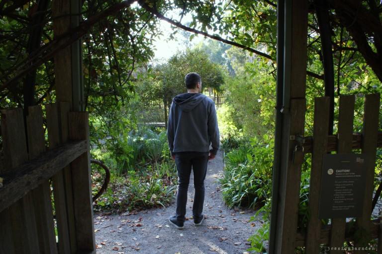 blog 9 (7)