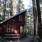 Vancouver Island: Road-trip Edition